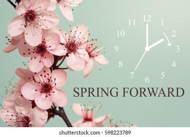 Spring Forward / Daylight Saving Time Begins