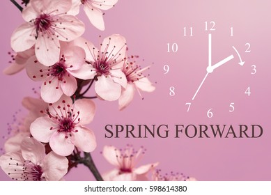 Spring Forward / Daylight Saving Time Begins / Mauve Background