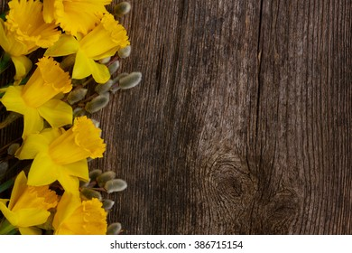 spring fresh  yellow daffodils with catkins border on wooden background