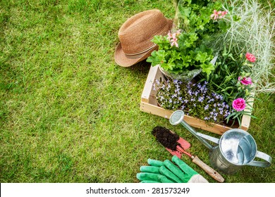 Spring in the garden. Flower seedlings, gardening tools (watering can, shovel, gloves) and gardener's hat on green grass from above. Background layout with free text space.