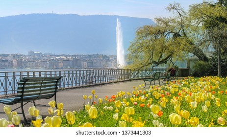 Spring in Geneva. Beautiful flowers and a lovely view of the Geneva Water Fountain, Jet d'Eau. Geneva, Switzerland.