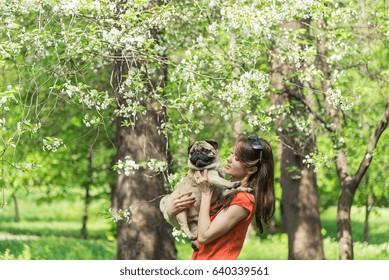 Spring. A girl with a pug dog near a burgeoning tree