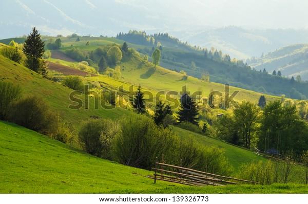 Spring gold evening rural landscape in the Mizhhiria, Carpathian mountains.