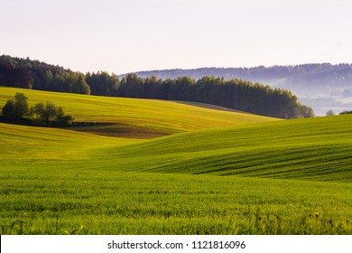Spring grassy fields surrounded by thick woods and light fog over the quiet lake and cloudless sky above. The sun fades the curtains. Fading light