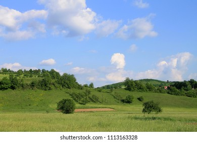 Spring green landscape with cloudy blue sky