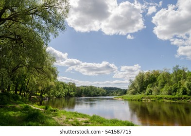 Spring, green leaves, nature, Gauja river