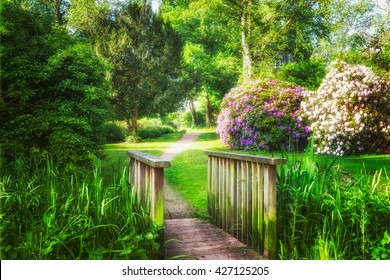 Spring green park. City park with green grass, pond, bridge, trees and blooming rhododendron. Springtime landscape background. Beauty in nature