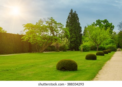 Spring green park with pathway, natural outdoor seasonal background