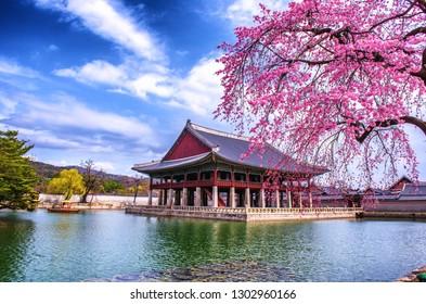 spring at gyeongbokgung palace in seoul south Korea