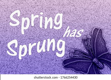 Spring has Sprung word message with metal butterfly with purple glitter paper