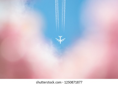 spring holiday vacation concept - plane and vapour trail in blue sky with out of focus pink blossom in foreground