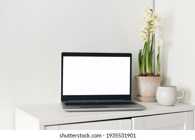 Spring home office still life composition. Laptop mockup, blank computer screen. Yellow daffodils in  flower pot. Cup of coffee on wooden cupboard, table. White wall background. Scandinavian interior.