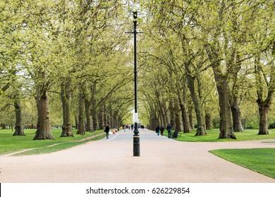 Spring in Hyde Park, London, United Kingdom