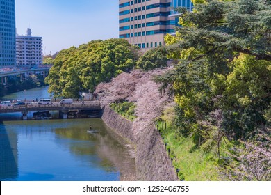 Spring in Japan, the Kii wakayama clan tokugawa homestead ruins monument in tokyo kioicho.(the Characters of a monument is kii wakayama clan tokugawa homestead ruins monument.)