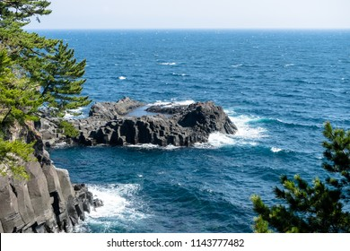 Spring Jogasaki coast