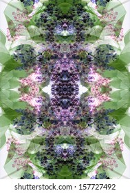 Spring Kaleidoscope: day