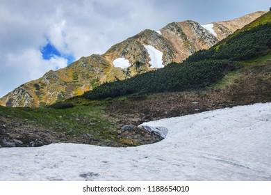 Spring in karpaty mountains