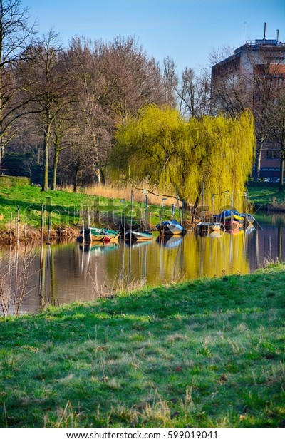 Spring landscape. Blooming weeping willow by the river with boats reflecting in the water. Breda, Netherlands