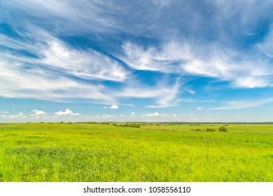 Spring landscape with blue sky, white clouds and yellow-green grass in the field