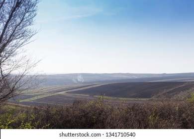 Spring landscape with a field. An average plan and a background covered of a smoke.