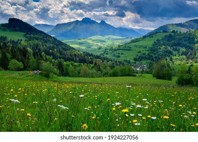 Spring landscape with flowering meadow and high hills. Mala Fatra, Zazriva, Slovakia.