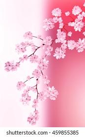 фотообои spring landscape. Flowering Pear. flowering garden.