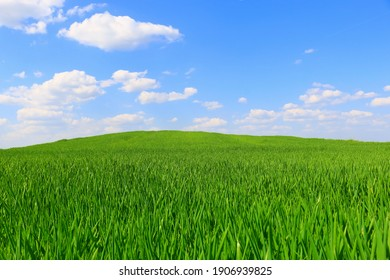 spring landscape with green field and blue sky with clouds