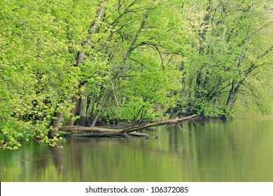 Spring landscape of the Kalamazoo River, Michigan, USA