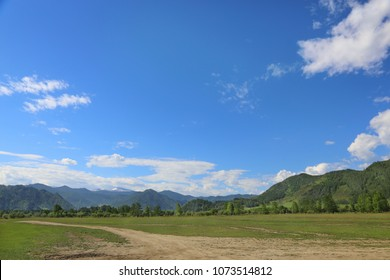 Spring landscape. Mountain meadow. Forest. Road. The Altai Mountains. A bright sunny day.