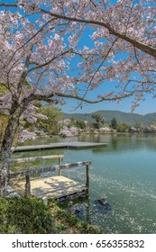 Spring landscape of the Osawa-no-ike pond in Kyoto