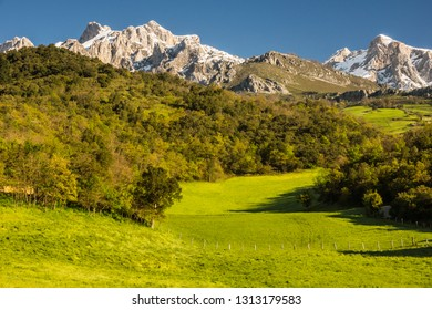 Spring landscape in the Picos de Europa mountain range in the north of Spain in Cantabria, Liebana Valley