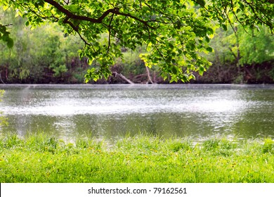 Spring landscape. River bank and the branches of trees hanging over him.