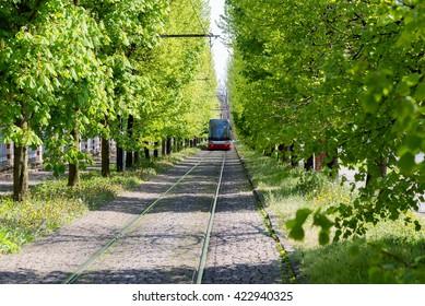 spring landscape with tram rails in Prague, Czech Republic