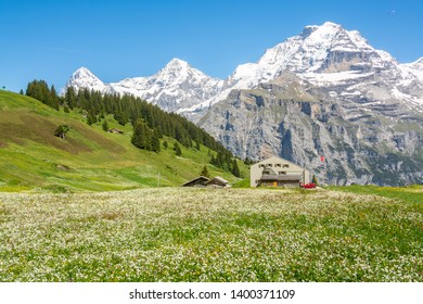 Spring landscape in the vicinity of Murren, Canton of Bern, Switzerland