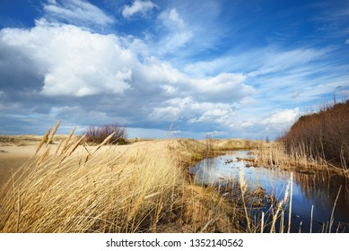 Spring landscape. View of the coast of the Baltic Sea on a clear sunny day. Latvia