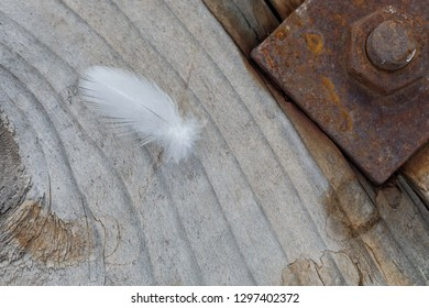 Spring lies on wooden background