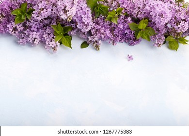 Spring Lilac flowers on blue rustic background decorative border copy space flat lay