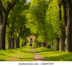 Spring linden alley with old chapel