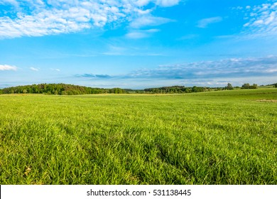 Spring meadow and blue sky over green field, countryside landscape