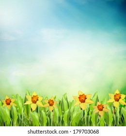 Spring meadow with flowers with blue sky background
