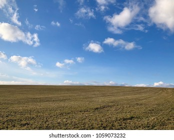 Spring meadow with white clouds