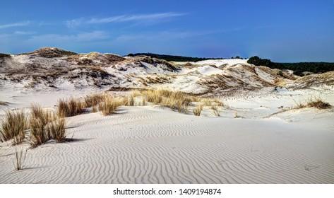 Spring midday. Moving sand dunes (Wydma Czołpińska)  at Slowinski National Park near Czolpino, Pomeranian Voivodeship, Poland.