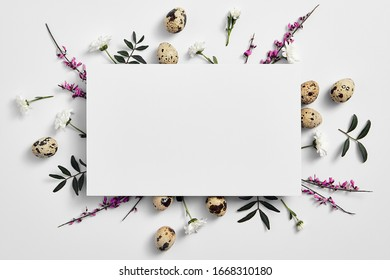 Spring minimal concept. Creative easter flat lay with white paper blank. Quail eggs with flower top view. White background.