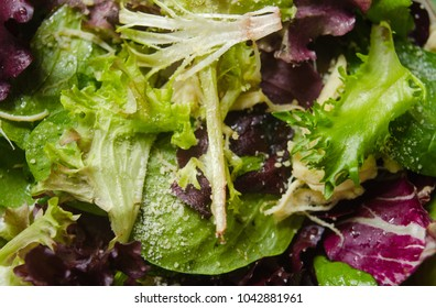 Spring mix salad with cheese