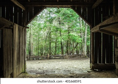 Spring Morning On The Farm.  Interior of a century old barn looking out to a lush green forest.