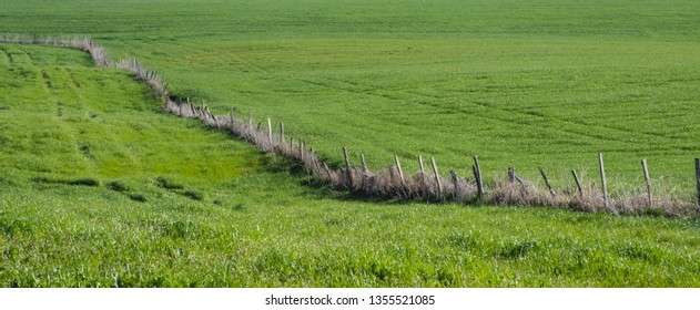 Spring mountain landscape fence on a green meadow