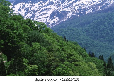Spring mountain and residual snow