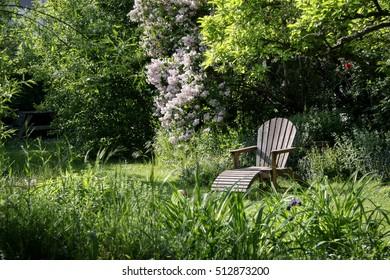 Spring in natural garden