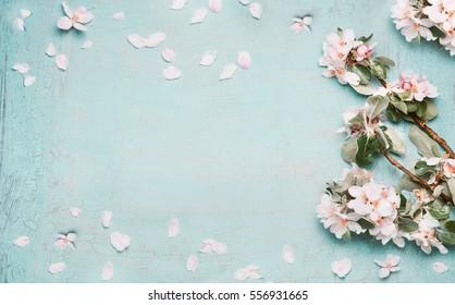 Frühlingshintergrund mit schöner Blüte in blauer Pastellfarbe, Draufsicht, Banner. Springtime-Konzept