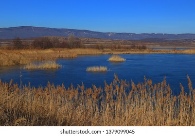 Spring in the nature. Beautiful spring landscape with lake.  Lake Milada near the city Usti nad Labem, Czech Republic